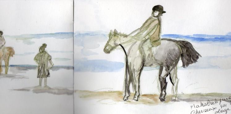 maha cheval sur la plage
